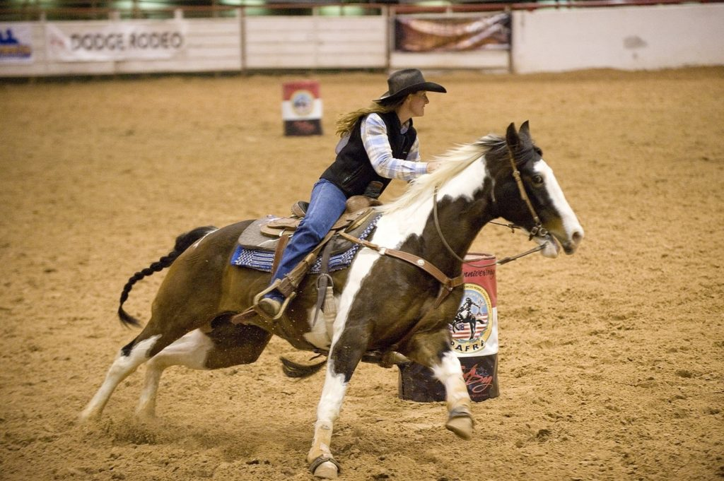 barrle-racing-horse-cowgirl-rider