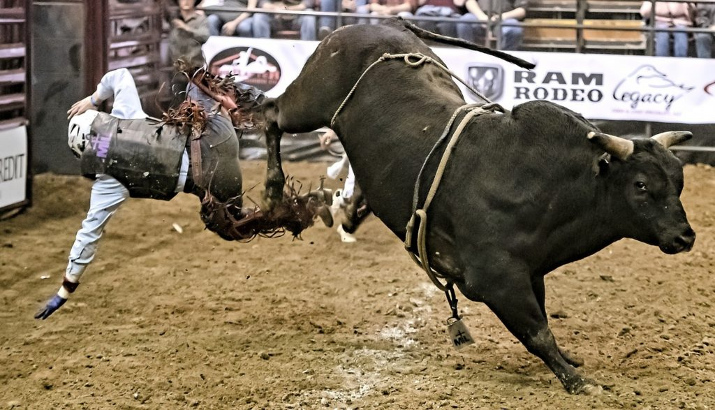 bull-riding-professional-cowboy
